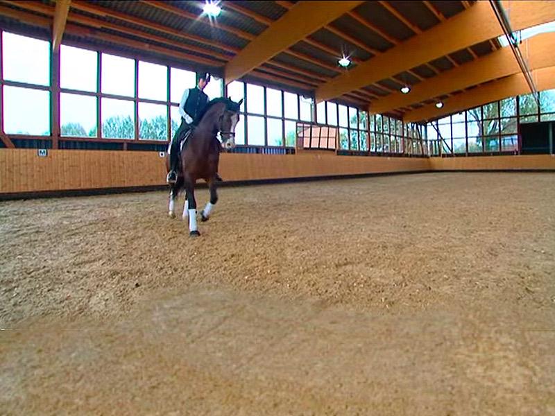 Pista de equitación con iluminación LED